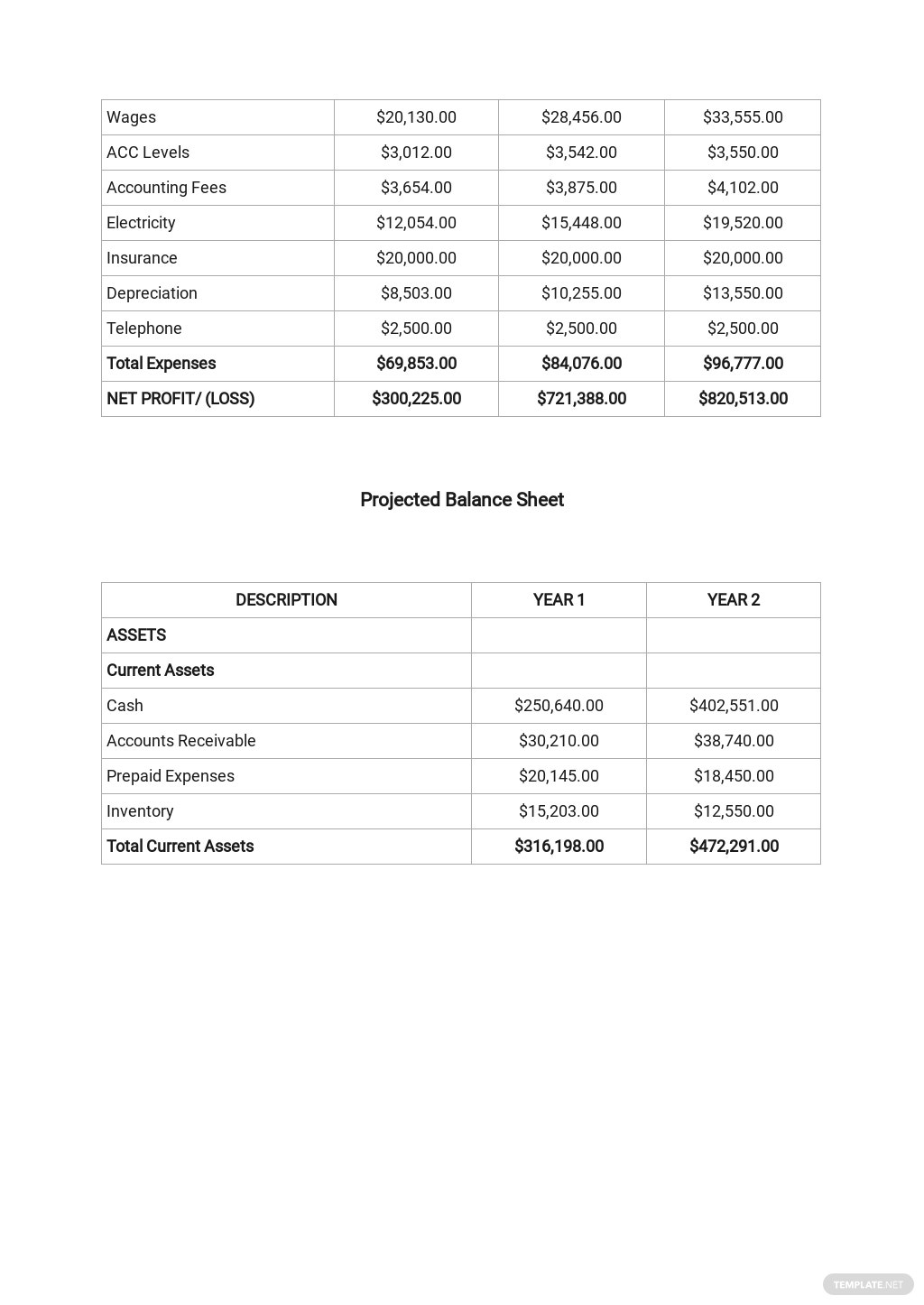 Rental Property Business Plan Template  7.jpe