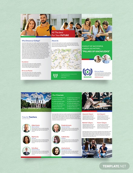 Free Education A3 Tri-Fold Brochure Template