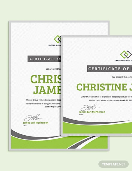 Sample Modern Employee Excellence Certificate