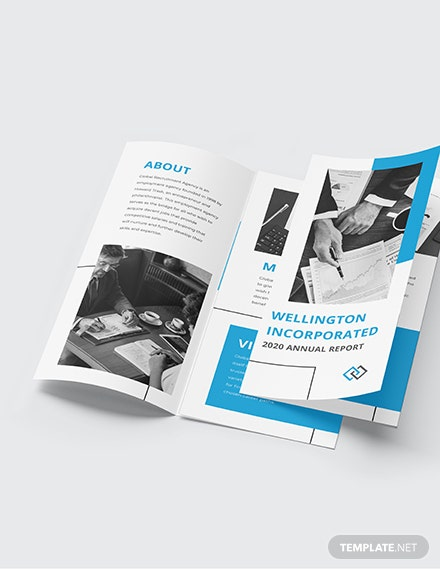 Annual Report TriFold Brochure Download