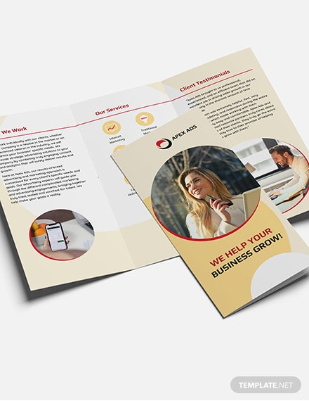 Sample Advertising Consultant TriFold Brochure