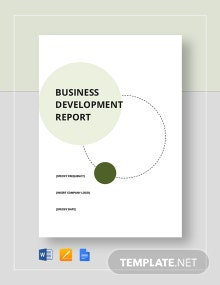Business Development Report Template
