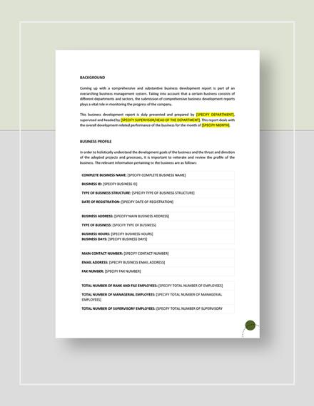 Business Development Report Download