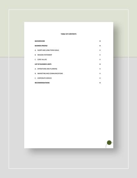 Business Development Report Template