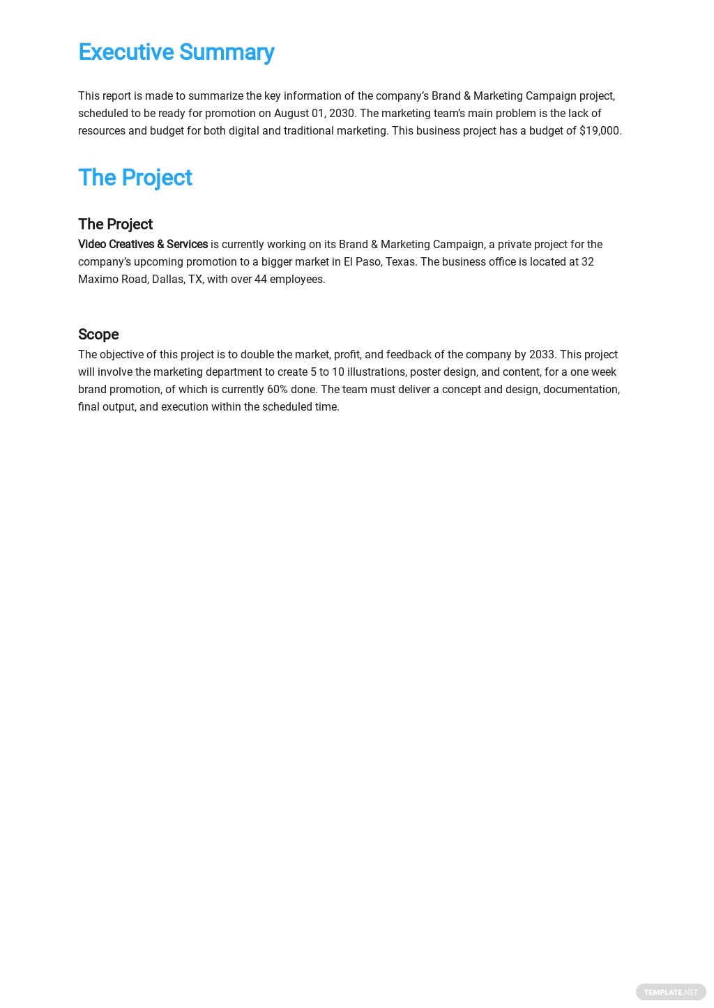 Business Progress Report Template 1.jpe