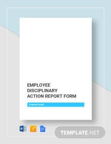 Disciplinary Report Form Template