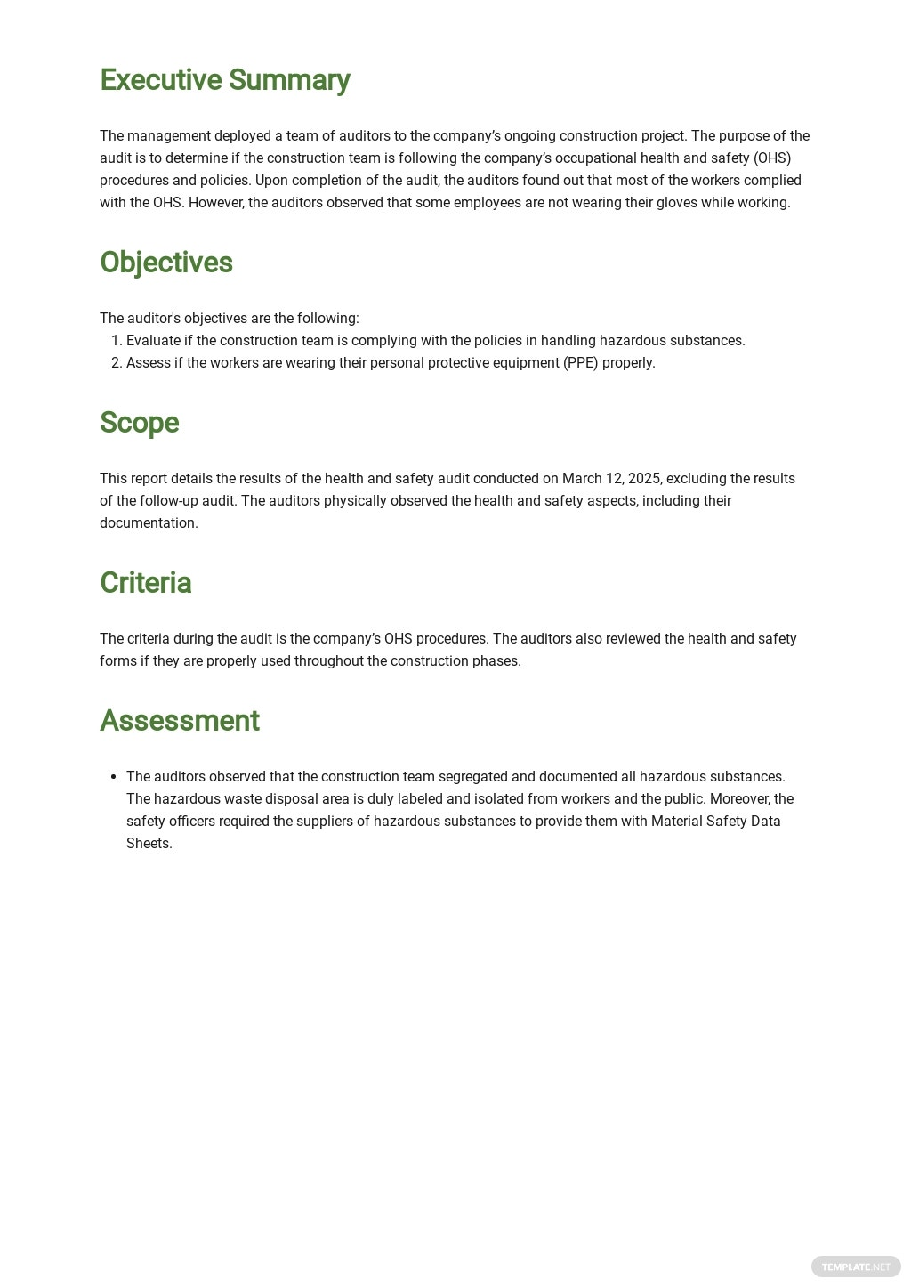 Health and Safety Audit Report Template 1.jpe