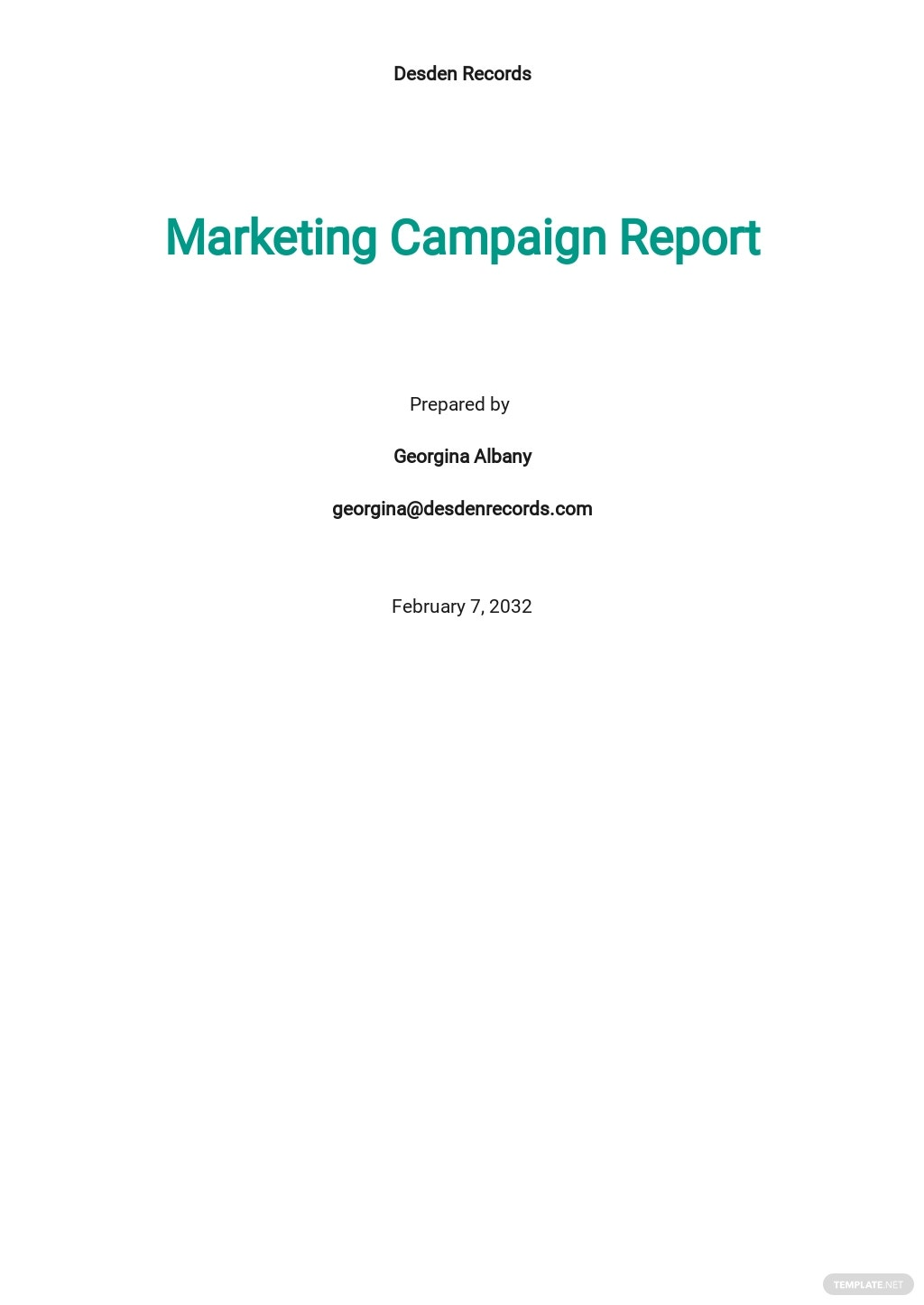 Marketing Campaign Report Template
