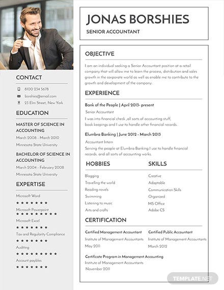 free professional banking resume and cv template download 160