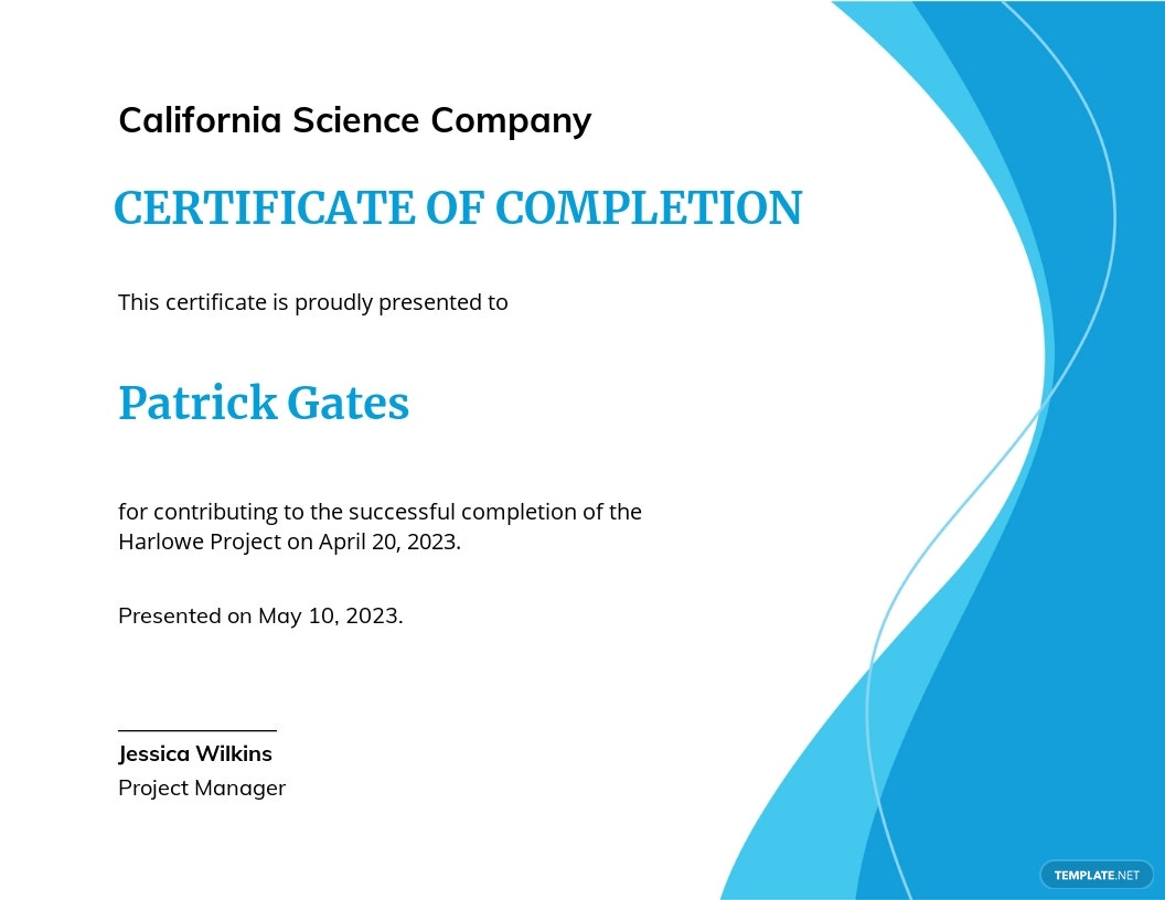 Project Completion Certificate Template