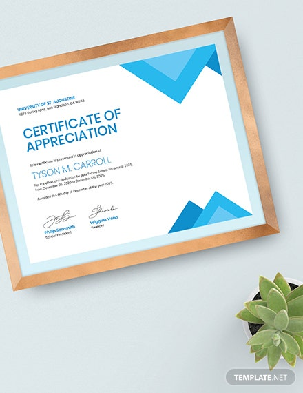 Sample Certificate of Appreciation for Student
