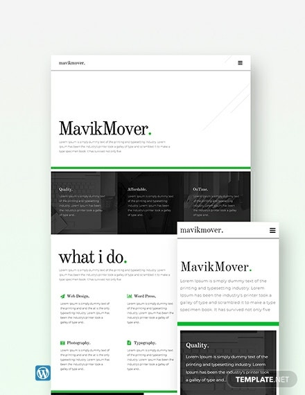 Free Developer Portfolio Wordpress Theme