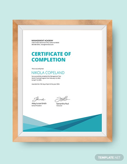 Management Training Certificate Download