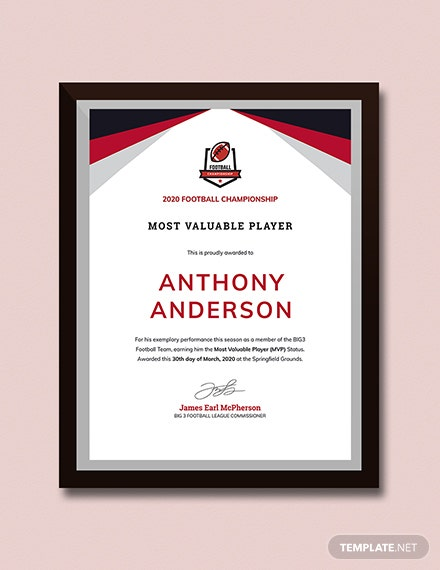 Player Award certificate Download