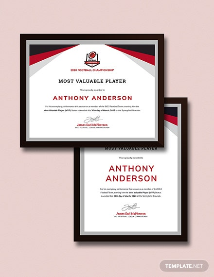 Sample Player Award certificate