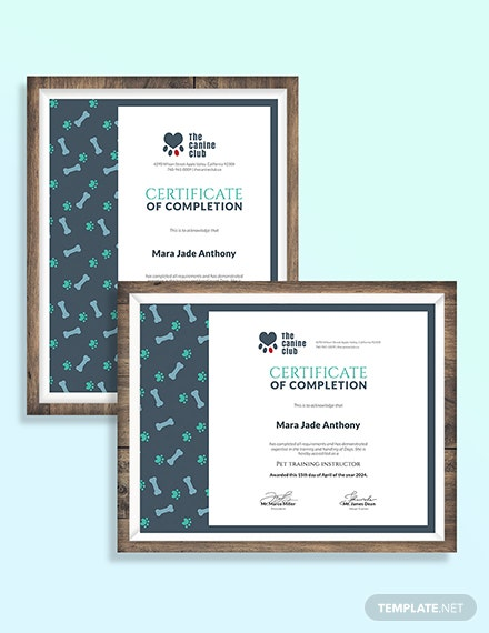 Service Training Certificate Download