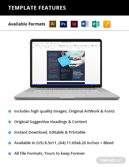 Software Company TriFold Brochure Printable
