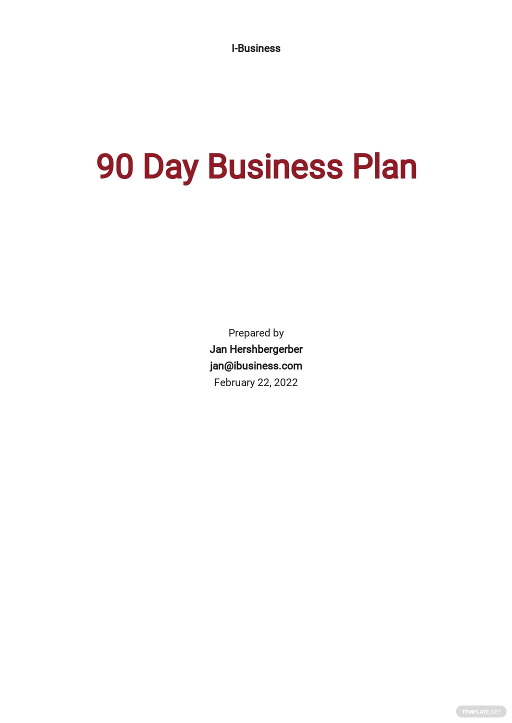 90 day Business Plan Template