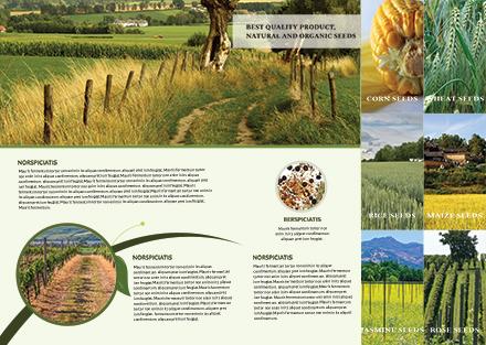 free agriculture bi fold brochure template - Agriculture Brochure Templates Free