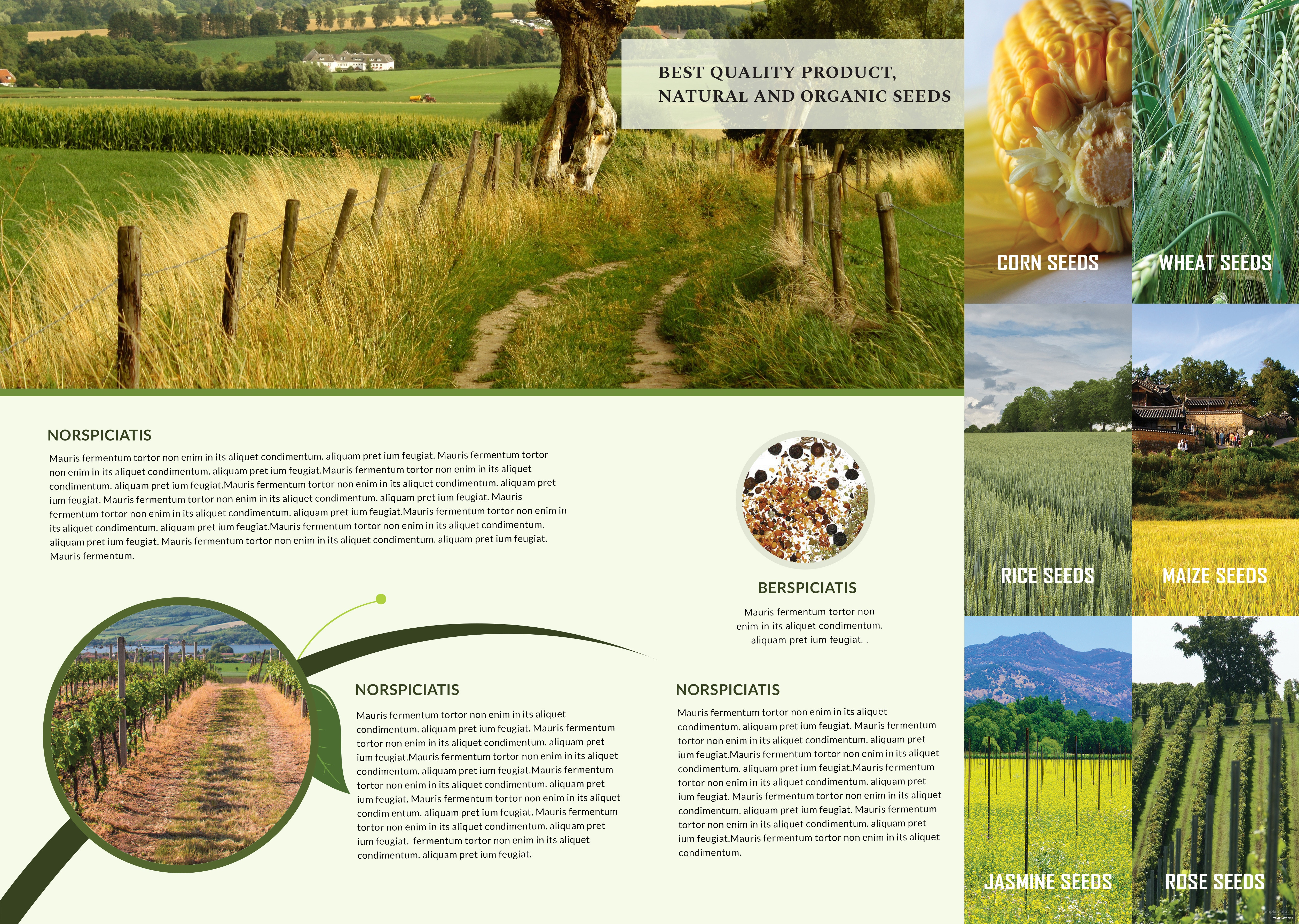 editable agriculture bifold brochure printable agriculture bifold brochure free download