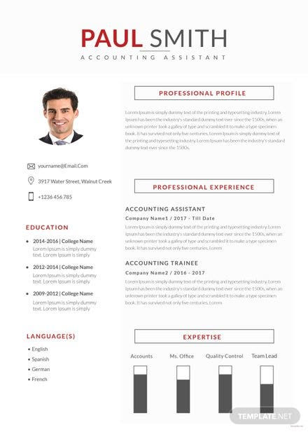Free Assistant Accountant Resume Template | Free Templates