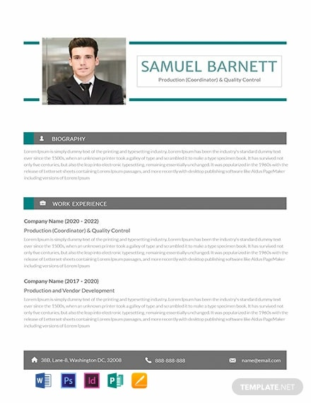Free Automobile Production Controller Resume Template