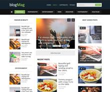 Free Blog Style Magazine PSD Website Template