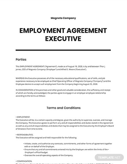 Employment Agreement Executive Template