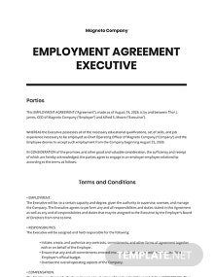 Employment Agreement Executive Template