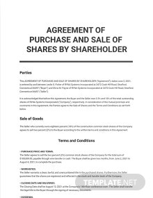 Agreement Of Purchase And Sale Of Shares By Shareholder Template