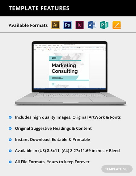 Editable Business Marketing Consultant Flyer
