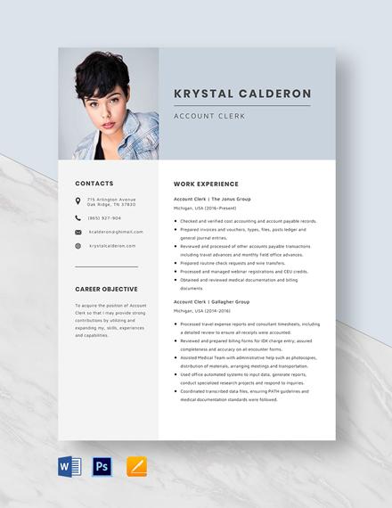 Account Clerk Resume Template