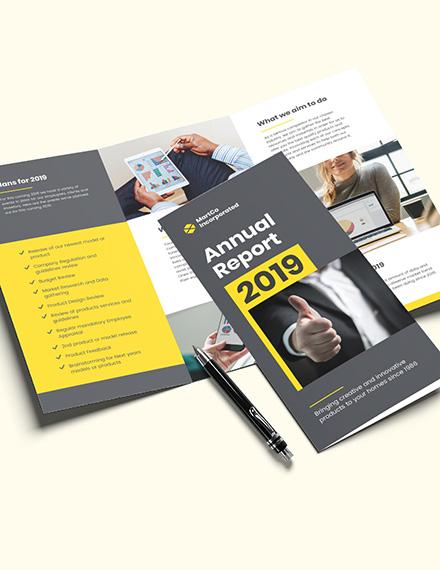 Sample Company Annual Report TriFold Brochure