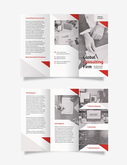 Consultant Tri-Fold Brochure Template