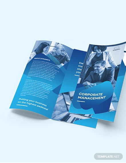 Corporate Management TriFold Brochure Download