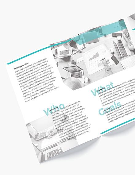 Marketing Consultant BiFold Brochure Download