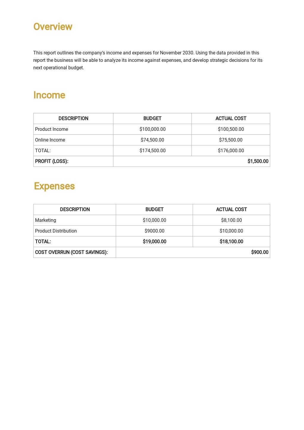 Sample Budget Report Template 1.jpe