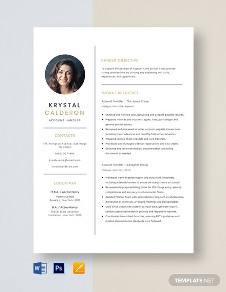 Account Handler Resume Template