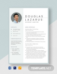 Accountant Auditor Resume Template
