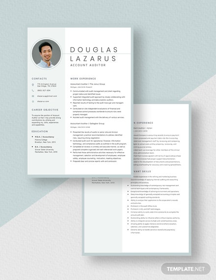 Accountant Auditor Resume Download