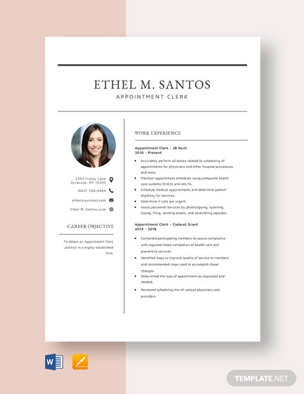 Appointment Clerk Resume Template