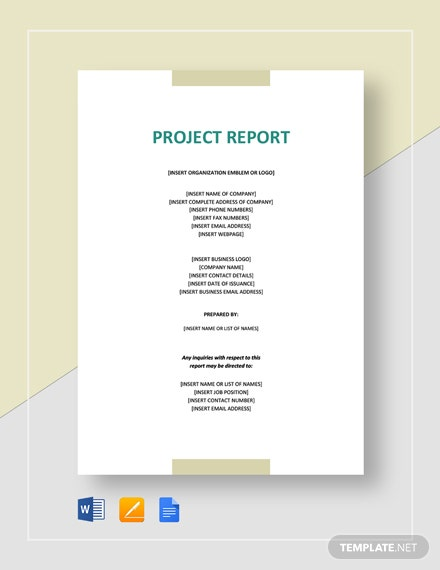 sample project report for investors