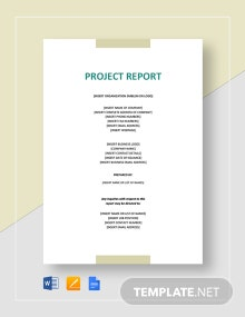 Sample Project Report For Investors Template