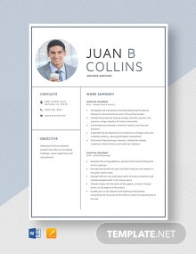 Archives Assistant Resume Template
