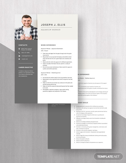 Aquarium Worker Resume Download