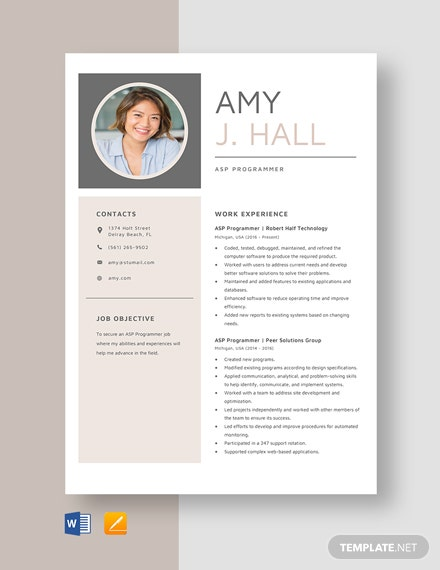 ASP Programmer Resume Template