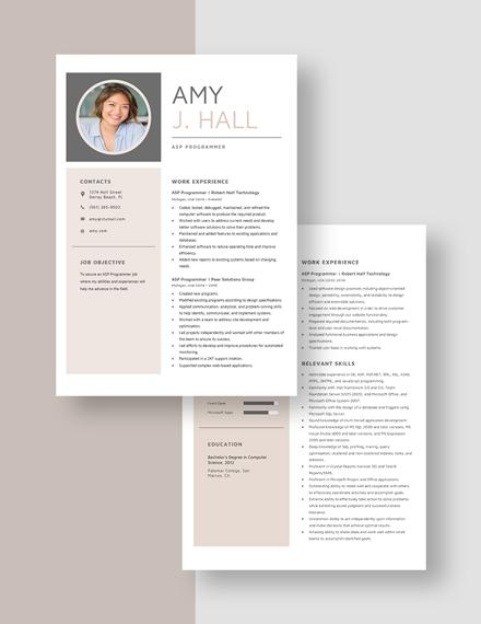 ASP Programmer Resume Download
