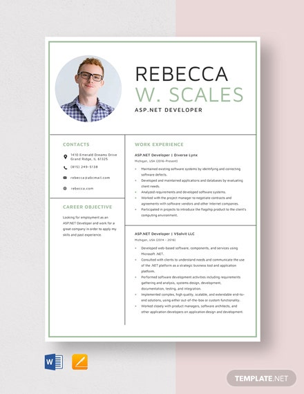 ASP.NET Developer Resume Template