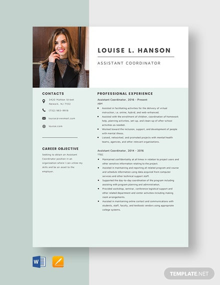 Assistant Coordinator Resume Template