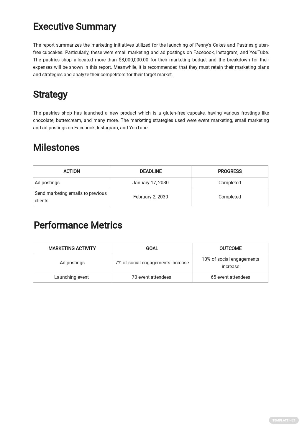 Sample Marketing Report Template 1.jpe